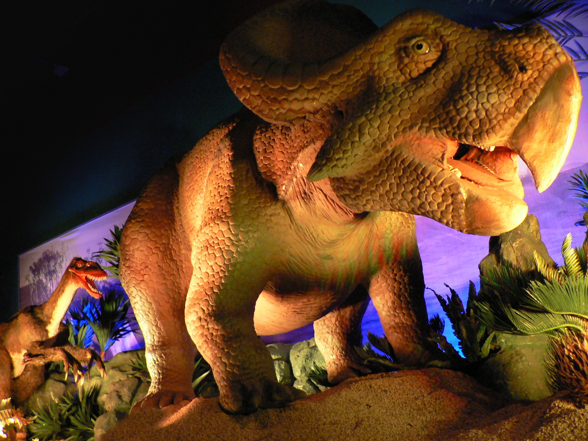 Dinosaurs Unearthed 2