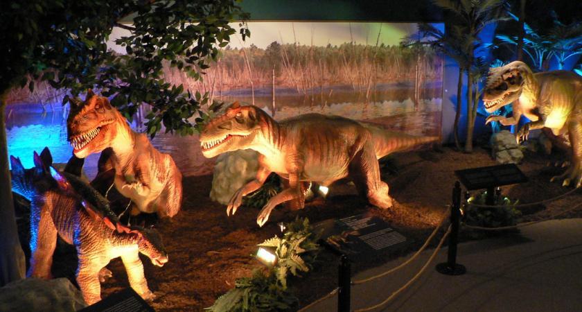 Dinosaures redécouverts 2